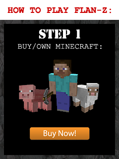 BUY/OWN MINECRAFT